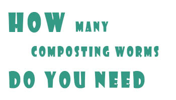 How Many Composting Worms Do You Need?
