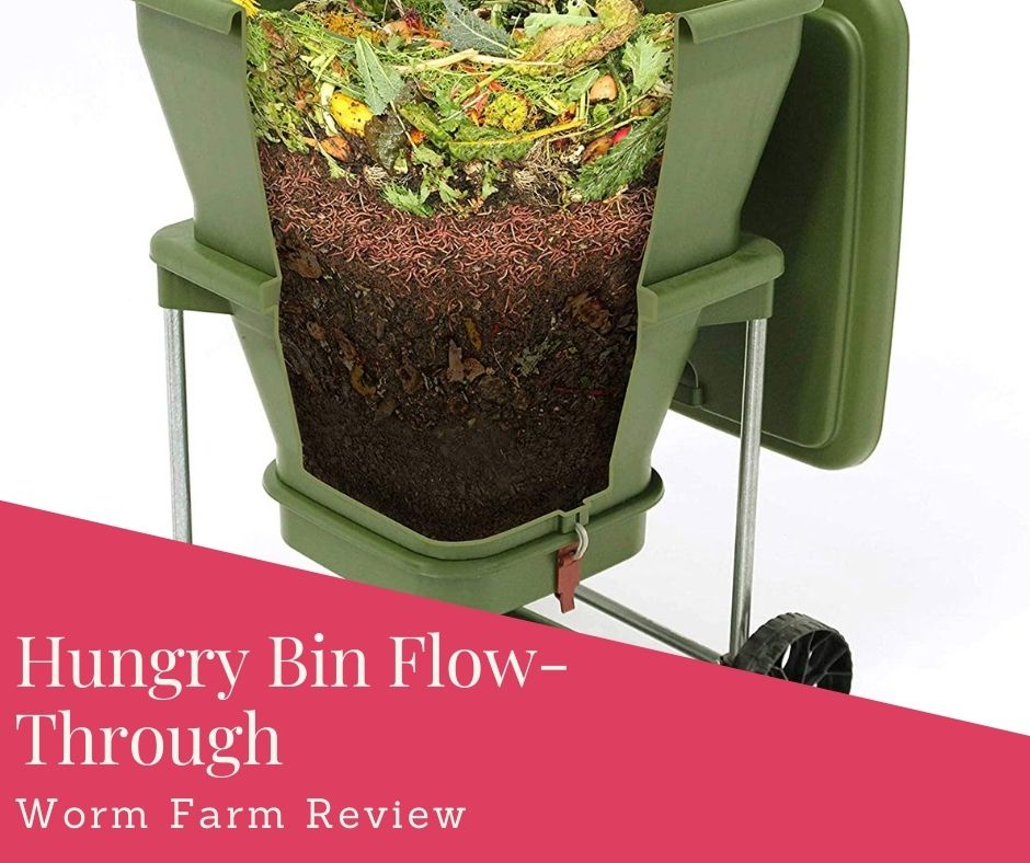 Hungry Bin Flow-Through Worm Farm Review – Easy Way To Composting