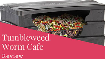 Tumbleweed Worm Cafe Kit Review