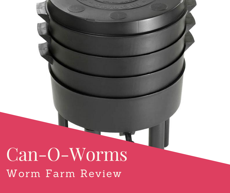 Can-O-Worms Review: Easy Way To Start Worm Composting